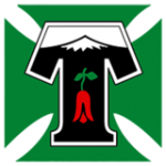 TemucoLogo