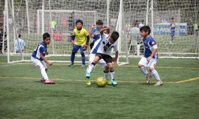 colo araucana futbol infantil